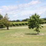 Vingårdar i Marlborough på Nya Zeelands Sydö