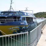 Vi lämnar vår valbåt i Kaikoura på Nya Zeeland