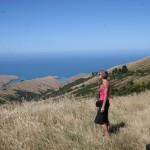 En fantastisk vy över Stilla havet och Te Oka Bay på Banks halvö