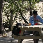 Lunch i en skuggande lund på Abel Tasman