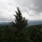 Utsikt över landskapet